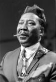 Muddy Waters - Blues song lyrics